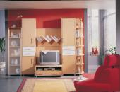 PLANUS Wohnzimmer mit Paneelwand