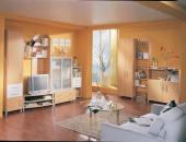 PLANUS Wohnzimmer mit TVT